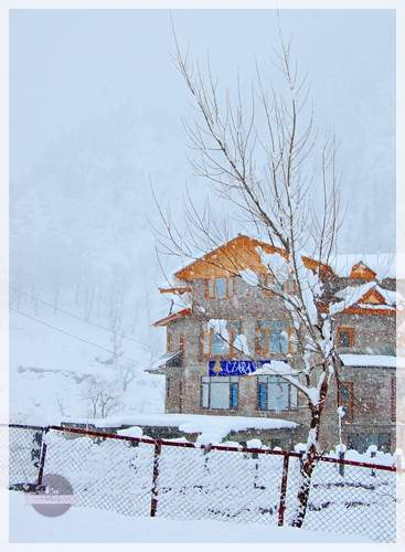 winter in sonmarg