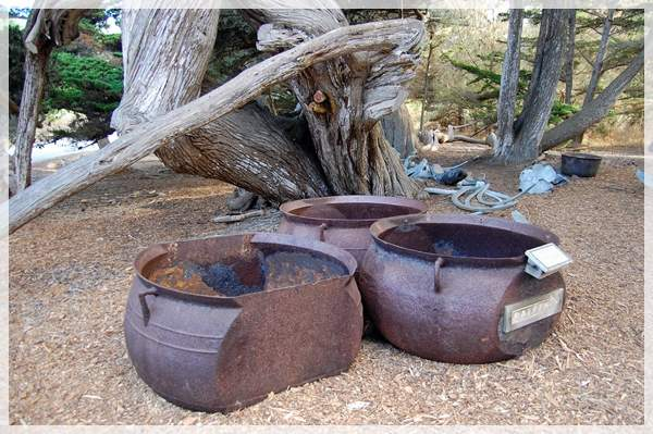 iron cauldrons