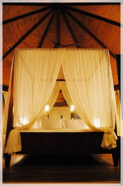 banyan tree resort bed