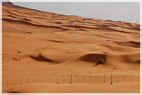 desert of sharjah