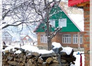 a house in sonmarg