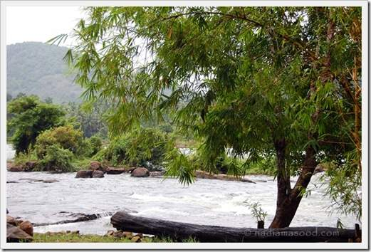 Athirapally River